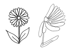 Image of a normal flower and one drawn by a person with hemi-spatial neglect
