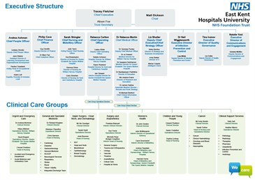 Executive Structure - Organisational Structure