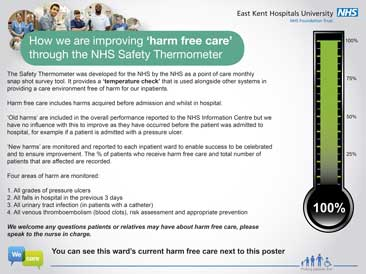 Patient Safety Thermometer